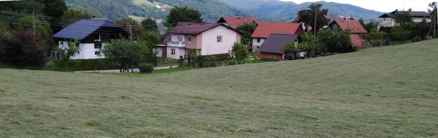 http://shramba.lovrenc.net/maxi/klepet/naPusi.jpg