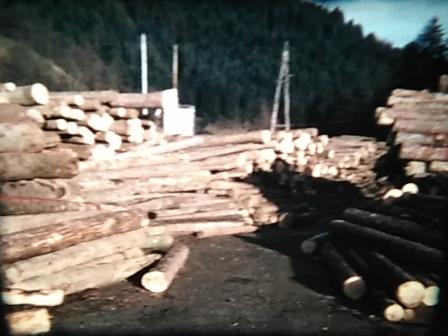 http://shramba.lovrenc.net/maxi/klepet/screenshot20190212-12445.jpg